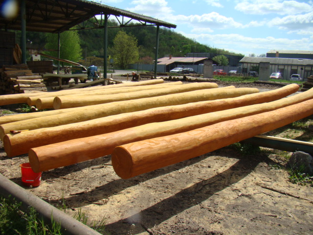 Lærketræ som naturpæle fra SkovTrup