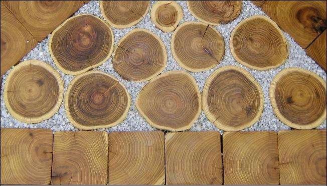 trae fliser i robinie trae fra SkovTrup